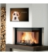 Jack Russell Terrier - Poster razze di cani