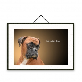 Deutscher Boxer - Dog breeds poster